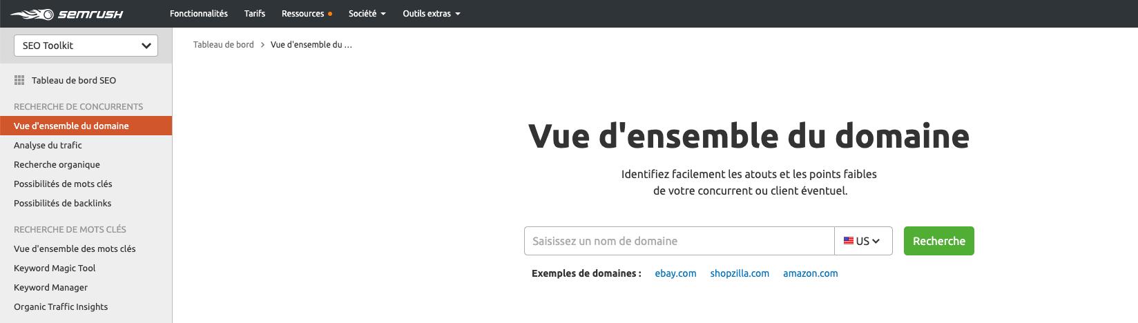 SEMRush Domain Overview